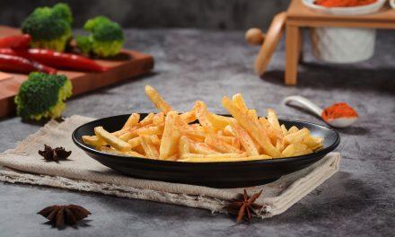 Quelle est la meilleure marque de friteuse